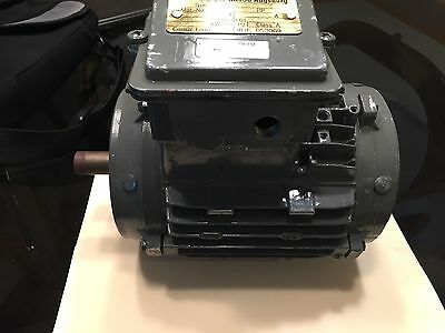 New (Never Used) D80/L4 electric motor for Wesumat Mark Vii
