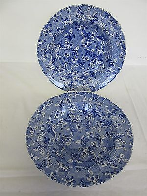 "Spode Blue Room Collection 'Valencia' pattern - Two 9"" soup bowls"