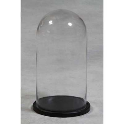 Tall Glass Display Cloche Dome Bell Jar With Wooden Base