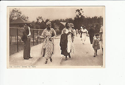 The Country Comes to Town Empire Exhibition South Africa 1936 vintage Postcard