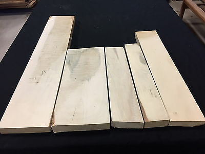 Holly American 4/4 lumber - 5 pcs 2.11 bd ft  (read description!)