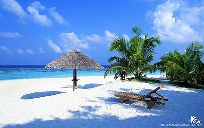 Travel website Running Business For sale Earn up to $1000/week 100% Automated