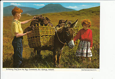 Collecting Turf from the Bog Connemara Co Galway Vintage Postcard