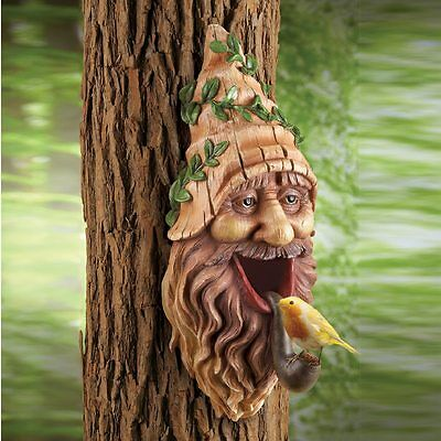 Tree Wall Mounted Gnome Head Functional Bird House