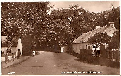 Bachelor's Walk Portadown Co. Armagh Ireland Rp Valentines Irish Postcard 65801
