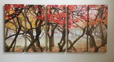 "New! Woods Forest Branch Nature Canvas Art 68""x 32"" Orange Red Ready To Hang"