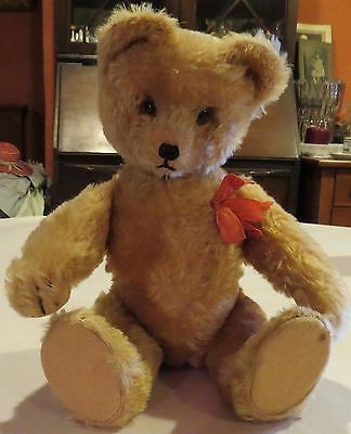 "C1940 German 12"" Mohair Teddy Bear w/Glass Eyes, Rare Schuco Yes No, Works!"