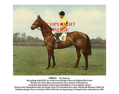 ARKLE & Pat Taaffe; 1964-66 Cheltenham Gold Cup winners 10x8 inch photo