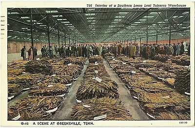 Loose-Leaf Tobacco Warehouse, Greeneville, Tennessee
