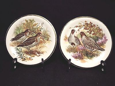 "Myott Butter Pats Coasters 4.5"" Set of 2 Birds VGUC Vintage Earthenware China"