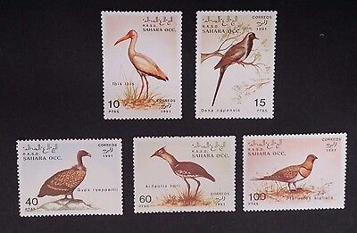 1991- R.A.S.D. SAHARA OCC Set of 5 X Birds Stamp MUH