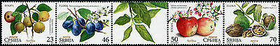 SERBIA 2017 - Flora - Fruits - Mint serie with vignette