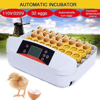 Automatic Digital 32 Eggs Incubator Chicken Poultry Hatcher Temperature Control