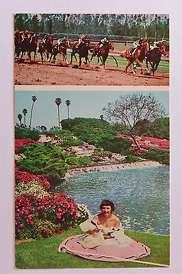Postcard Hollywood Park Race Track Goose Girl Unposted