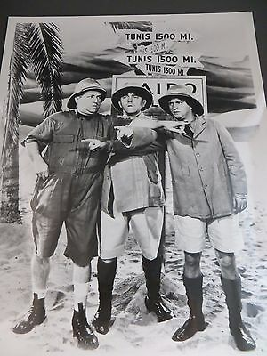 1930s The Three Stooges Larry Moe Curly Explorer Scene Still Photo Print #525