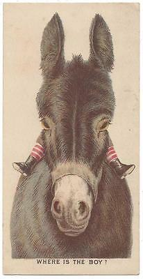 Chase & Sanborn's Boston Roast Coffees - Trade Card - Donkey - Forbes Lith Co.