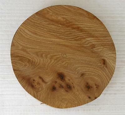 1 Burr Elm Woodturning Bowl Dish Platter Wood Blank