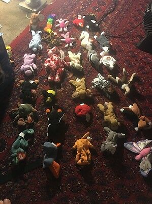 TY beanie bean bag babies/ plush dolls new with tag lot of 30 Very Rare No Reser