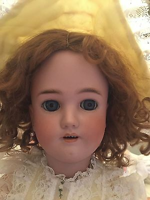 Fabulous Antique Heinrich Handwerck Simon Halbig Stamped Body Doll, Look!!!!!