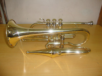 BRAND NEW BRASS FINISHING Bb FLAT ECHO CONRET WITH FREE HARD CASE+MOUTHIPIECE