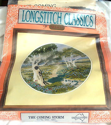NEW SEMCO Long Stitch Kit 'The Coming Storm'  29cm Round (11ins)