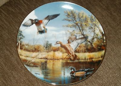 "Danbury Mint Settling In by David Maass ""On the Wing"" Collection no COA Duck"