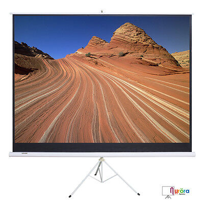 100'' 16:9 Portable Projector Movie Tripod Pull-Up Projection Screen Matte White