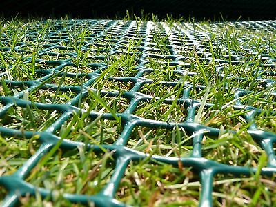 Grass Reinforcement 1x10m Turf Protection Mesh Black Ground Guard TR4 Suregreen
