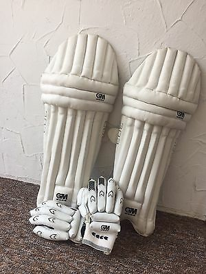 Gunn and Moore 303 Batting Pads and Batting Gloves