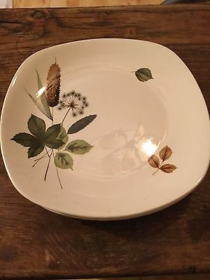 Set of 5 Large Riverside Dinner Plates by John Russell For Midwinter