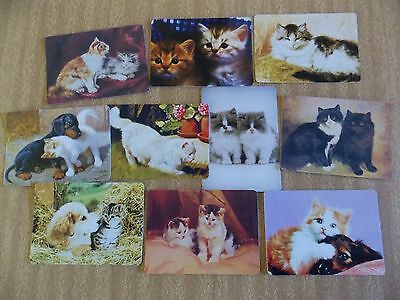 Swap playing cards   10 Modern Wides    Cats  #3