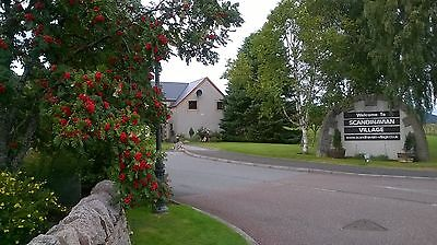 Aviemore apartment, holiday rental for week beginning Saturday 19 August