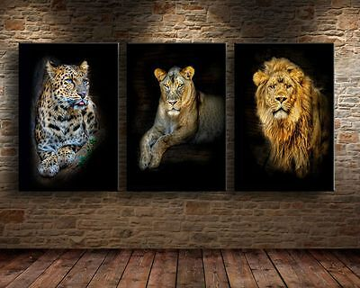 3 pieces Oil Painting HD Print On Canvas Wall Decor Art,Leopard Lion/Unframed