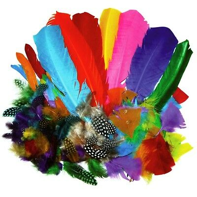 Feathers Bumper School Pack