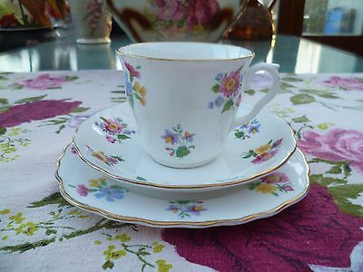Pretty Vintage Royal Vale China Trio Tea Cup Saucer Plate Mixed Flowers
