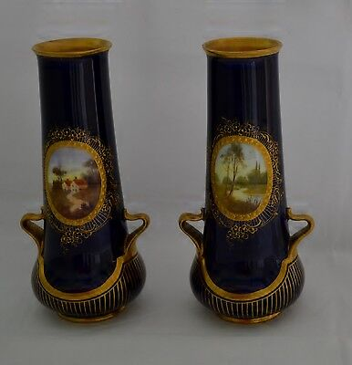 Hand Painted Royal Doulton Vases