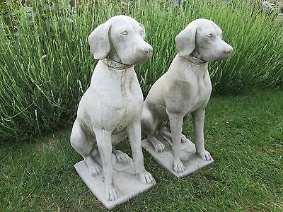 large pair of stone/concrete labrador/hunting dog garden ornaments - Andy's Yard