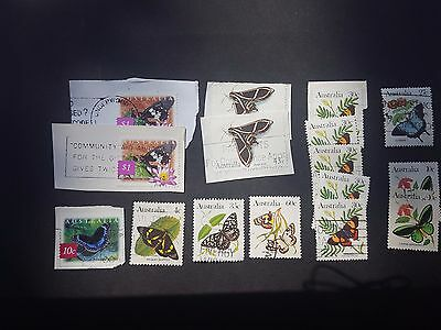AUSTRALIA STAMPS - COLLECTION OF BUTTERFLY STAMPS - USED - 49p START