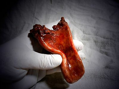 MOVIE QUALITY PROPS Silicone Tongue - HALLOWEEN Horror body parts Costume Mask