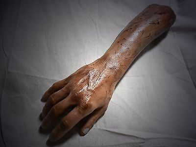 HORROR PROPS Severed Right ARM Hand HALLOWEEN dead Body Parts FREAK SHOW Zombie