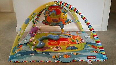 Tiny love deluxe baby play mat / play gym. Pick up Berwick or Brighton East