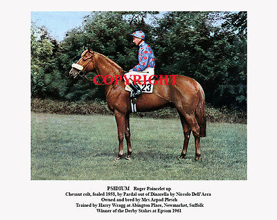 PSIDIUM and Roger Poincelet: 1961 Derby winners 10x8 colour, fully captioned