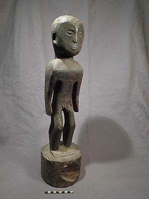 Old Ifugao Ancestor figure; authentic (New Guinea,headhunter,skull,Kalinga,Fiji)