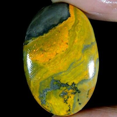 37.30cts NATURAL DESIGNER BUMBLEBEE ECLIPSE JASPER OVAL CABOCHON PURE GEMSTONE