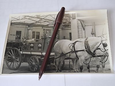 vintage photograph Leicester fire brigade Horse Drawn inside building