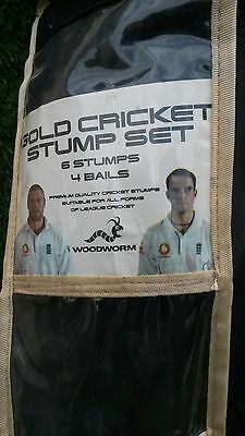 Woodworm Full Size 28 Inch 6 Cricket Stumps and 4 Bails. Used. Good Condition.