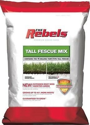Rebel Tall Fescue Mix Grass Seed - 3 Lbs.