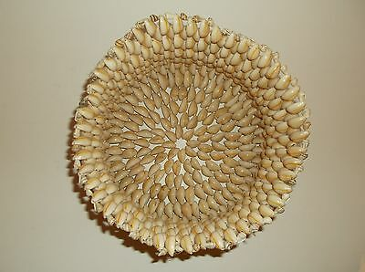 Handmade Seashell Basket Made From Small Shells Possibly Cowrie Puka But Unknown
