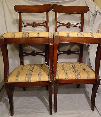Mahogany Chair Set 4 Chairs Antique Duncan Phyfe Style Paine Furniture Company