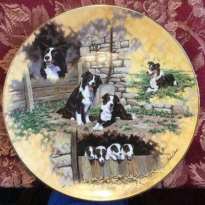 Border Collies - Country Artists, CA, The Top Dogs Collection, China Plate
